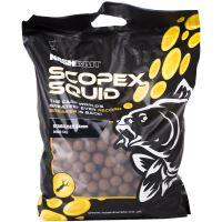 Nash Boilies Stabilised Scopex & Squid-1 kg 15 mm
