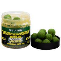 Jet Fish Boosterované Boilie Special Amur Vodní Rákos 20 mm 120 g