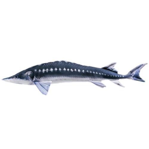 Gaby Plyšová Ryba Jeseter 120 cm